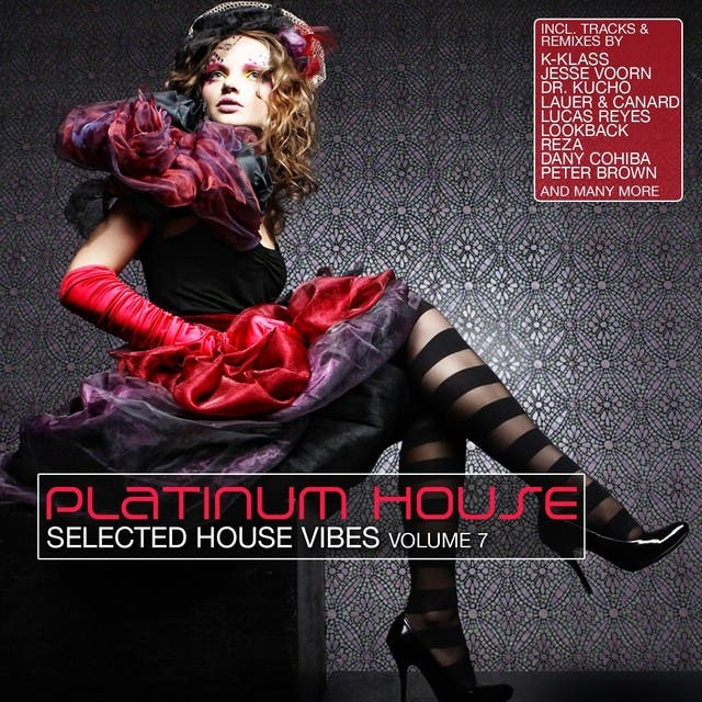 Platinum House, Vol. 7 (Selected House Vibes)