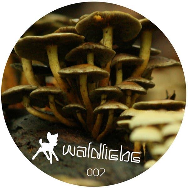 Waldfreund