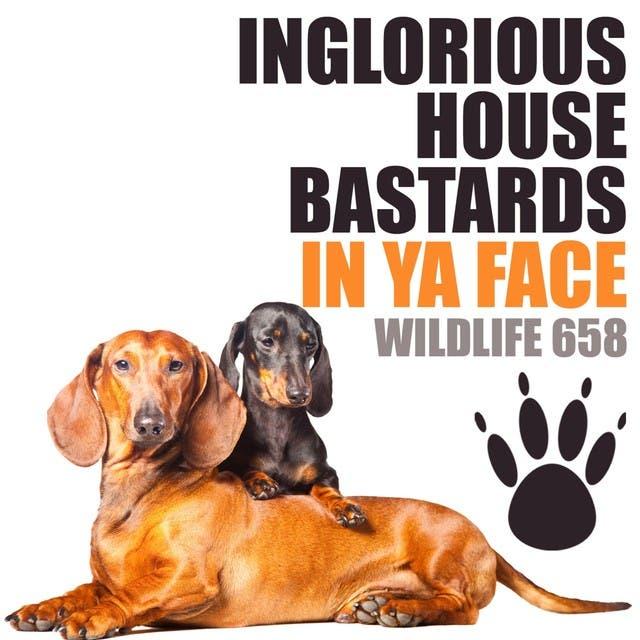 Inglorious House Bastards