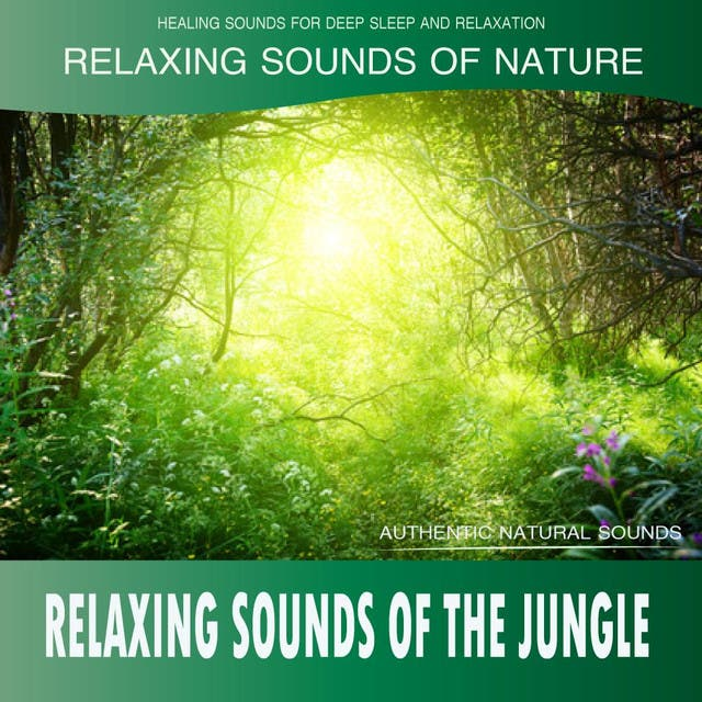 Healing Sounds For Deep Sleep And Relaxation
