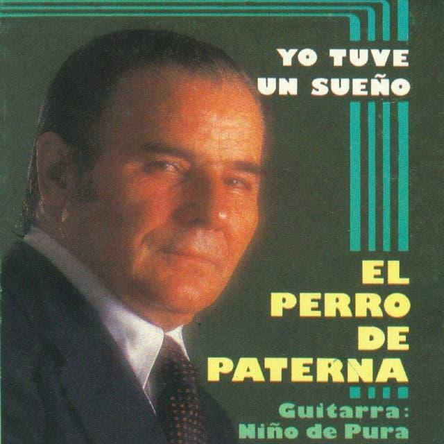 El Perro De Paterna