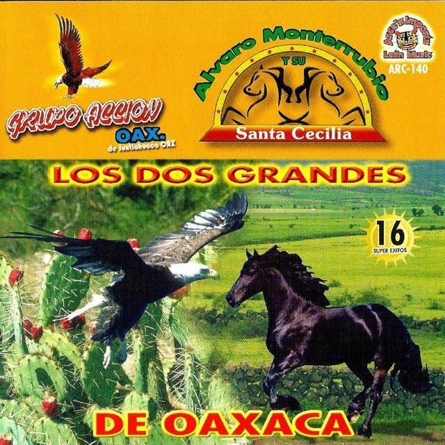 Accion Oaxaca & Alvaro Monterrubio image