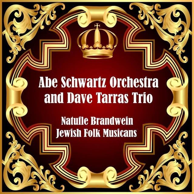 Abe Schwartz Orchestra image