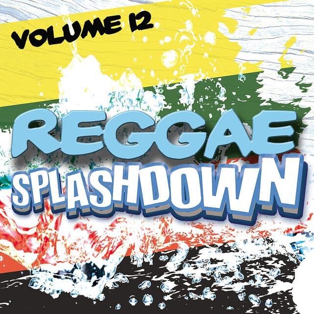 Reggae Splashdown, Vol 12
