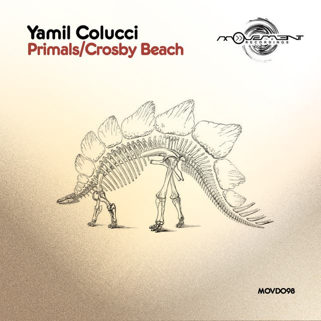 Yamil Colucci