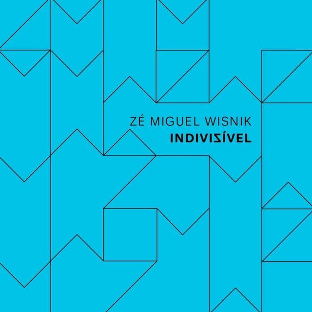 Zé Miguel Wisnik