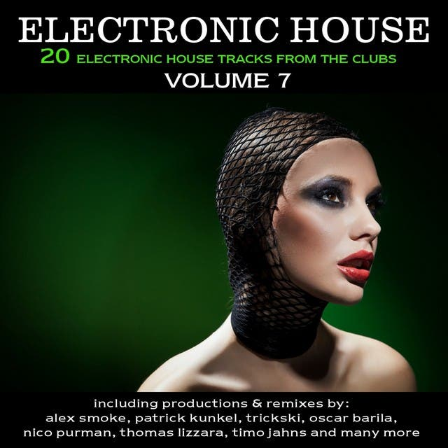 Electronic House, Vol. 7