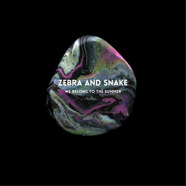 Zebra And Snake