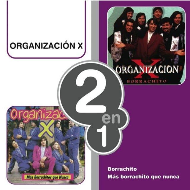 Organización X