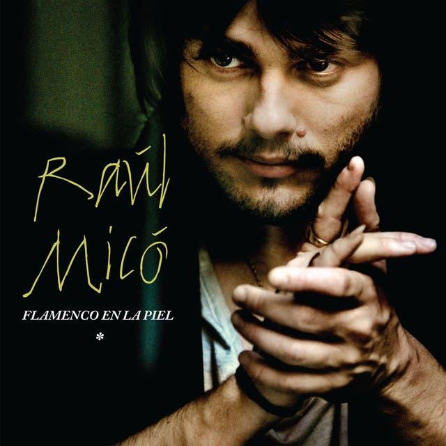 Raul Mico