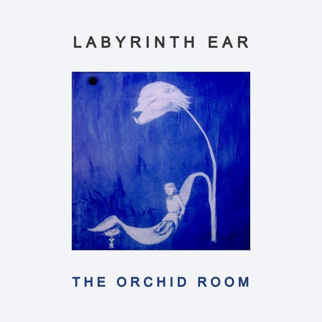 Labyrinth Ear