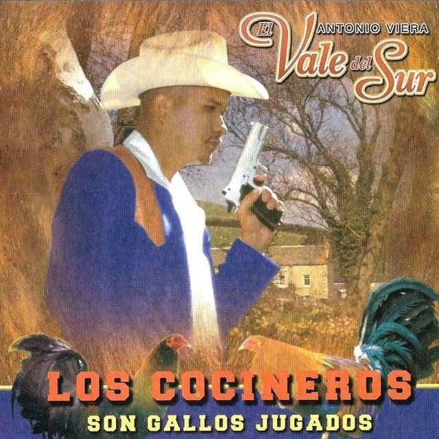 Antonio Viera El Vale Del Sur image