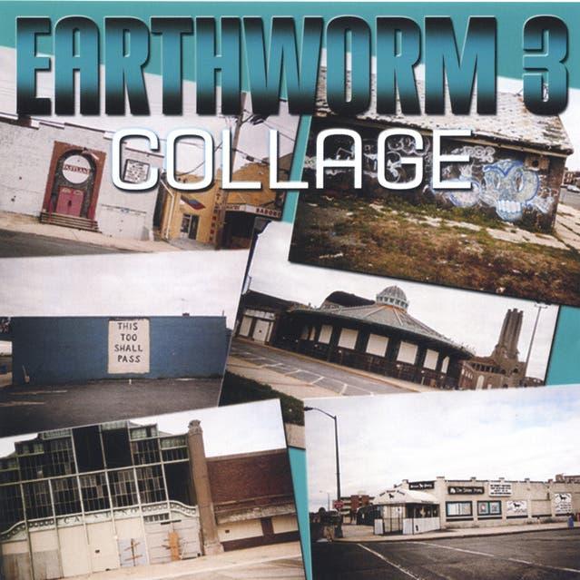 Earthworm image
