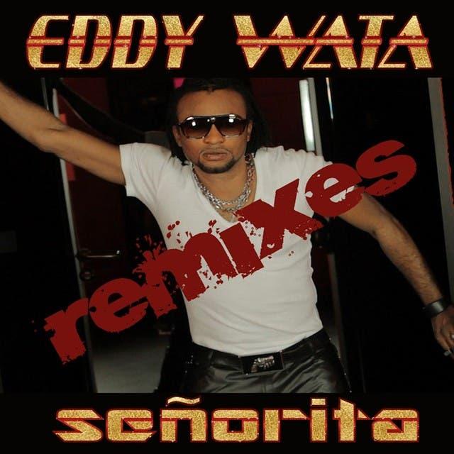Señorita Remixes