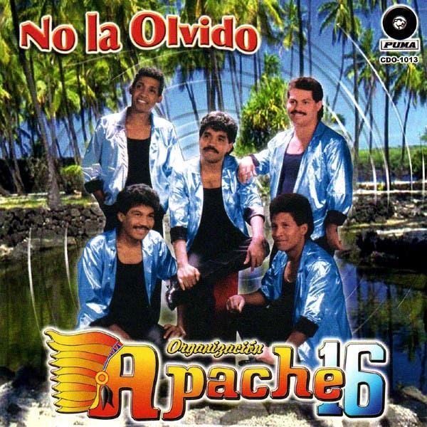 Organizacion Apache 16