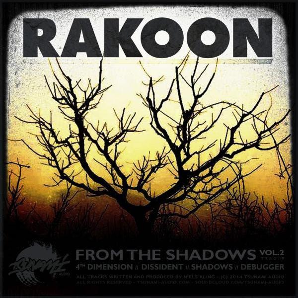 Rakoon image