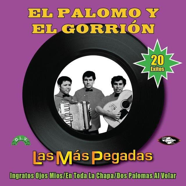 El Palomo Y El Gorrion