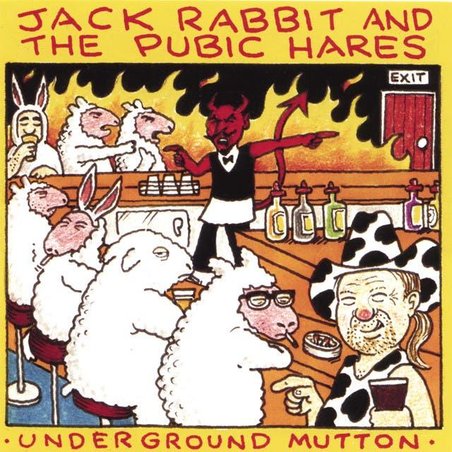 Jack Rabbit & The Pubic Hares