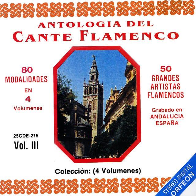 Antologia Del Cante Flamenco, Vol. 3