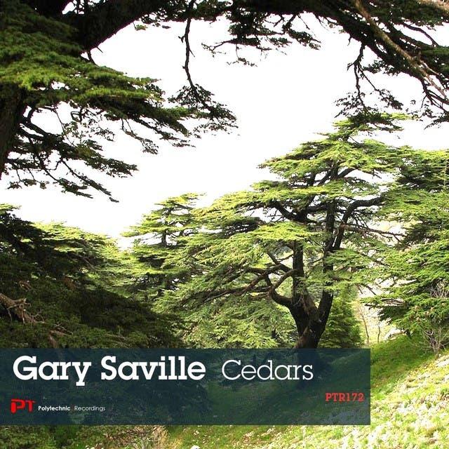 Gary Saville image