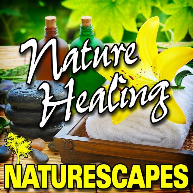 Naturescape image
