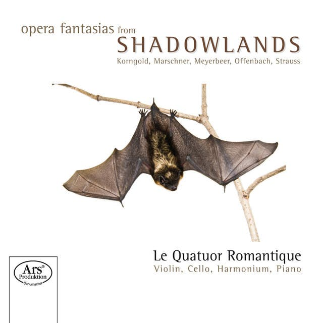 Quatuor Romantique, Le