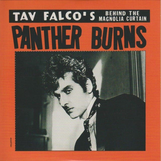 Tav Falco & The Unapproachable Panther Burns image