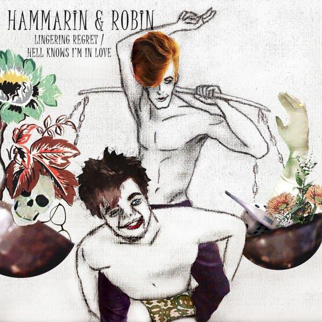 Hammarin & Robin image