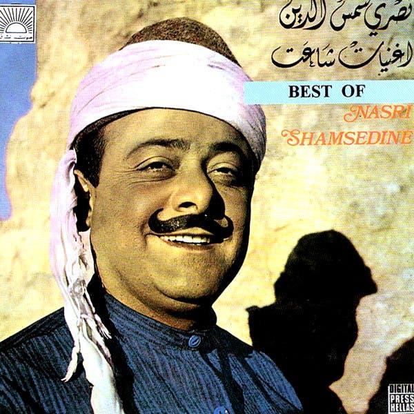 Nasri Shamsedine