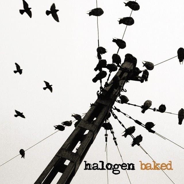 Halogen image