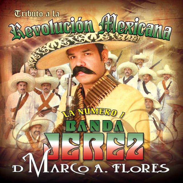 Tributo A La Revolucion Mexicana