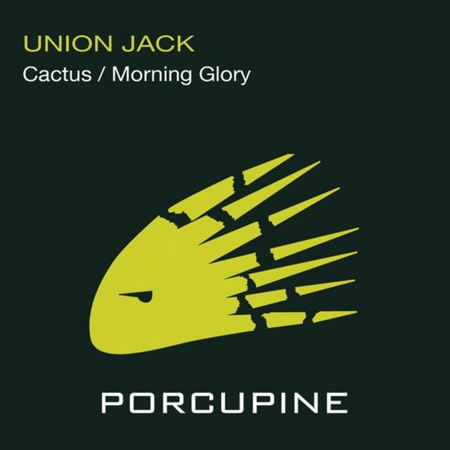 Cactus/Morning Glory