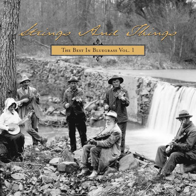 Strings And Things: The Best In Bluegrass Vol. 1