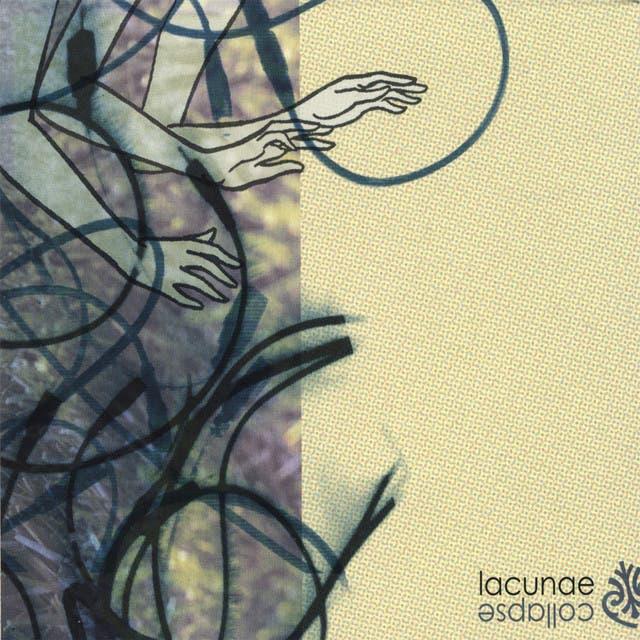 Lacunae