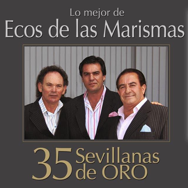 Ecos De Las Marismas image