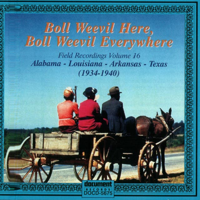 Boll Weevil Here, Boll Weevil Everywhere - Field Recordings Vol. 16 (1934-1940)