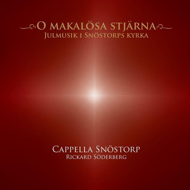 Cappella Snöstorp