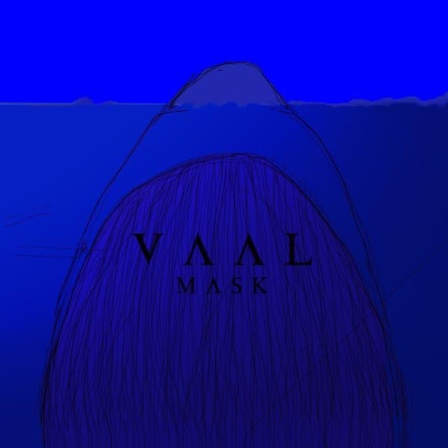 Vaal image