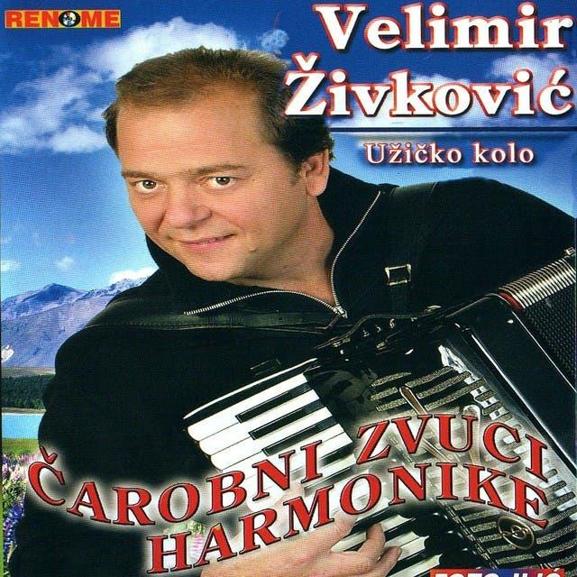 Velimir Zivkovic
