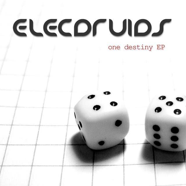 Elecdruids