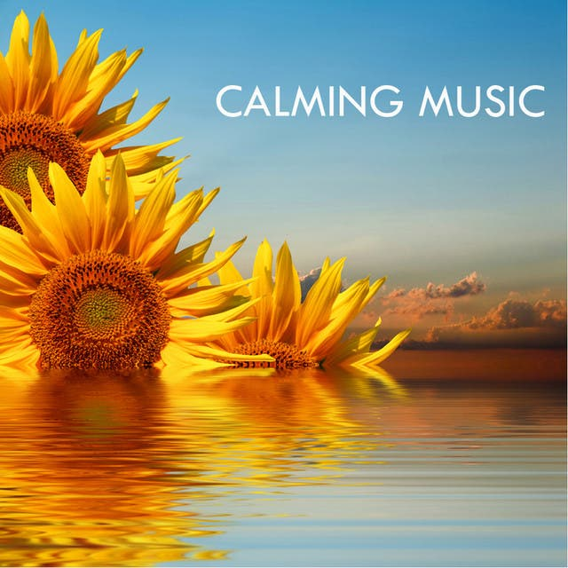 Calming Music Academy