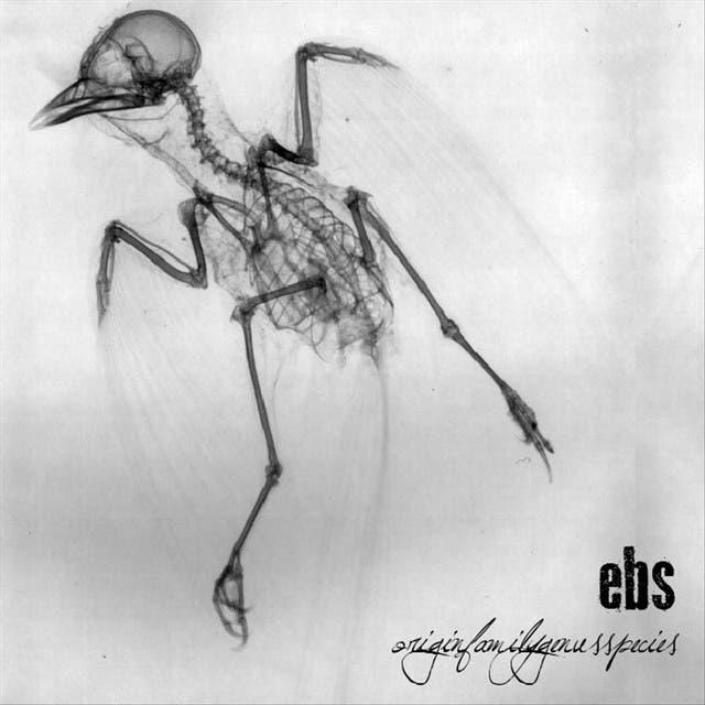 Ebs image