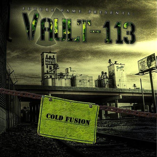 Vault-113 image