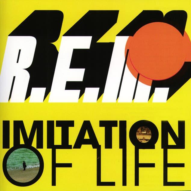 Imitation Of Life