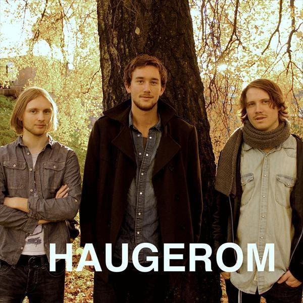 Haugerom