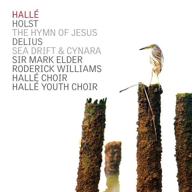 Halle Choir image