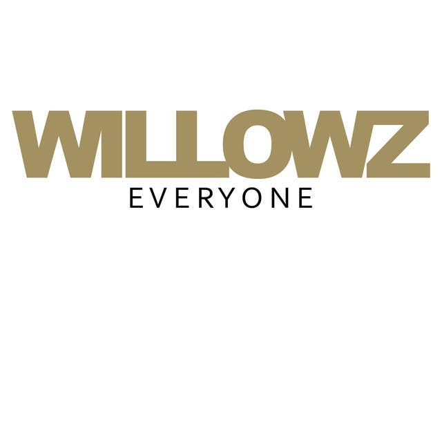 Willowz image