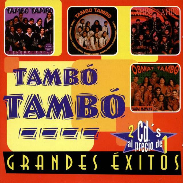 Tambó Tambó image