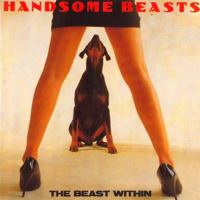 Handsome Beasts image