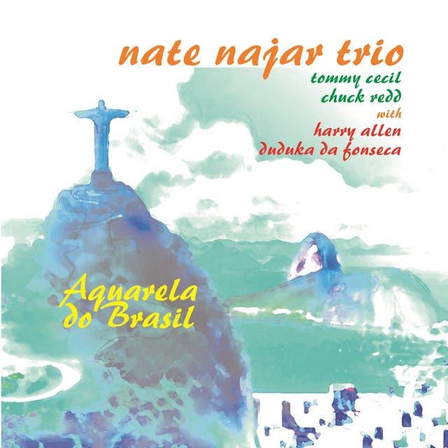 Nate Najar Trio